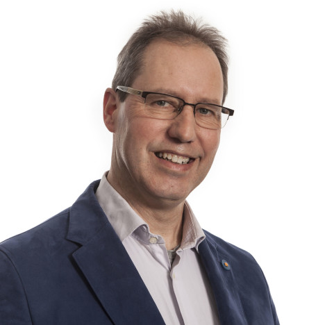 Hans Flipsen, subsidieadviseur