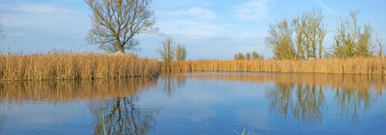 Natuurbeheer en waterbeheer