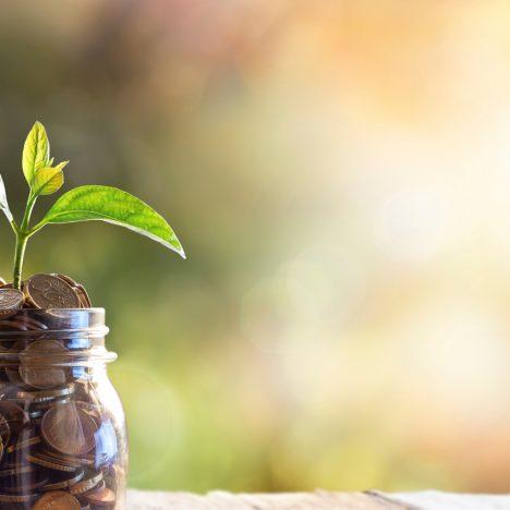 Geld vanuit provinciale subsidieregelingen